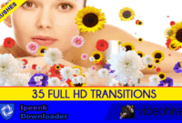 Download Gratis Editors Transition Pack