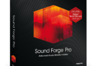 Download Gratis MAGIX Sound Forge Pro 11 Full Version