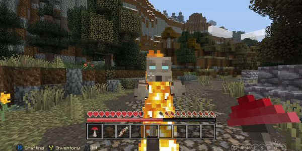 Download Minecraft Full Verion – 04