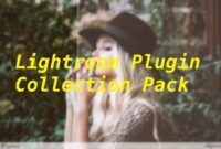 Download Gratis Lightroom Plugin Collection Pack Full Version